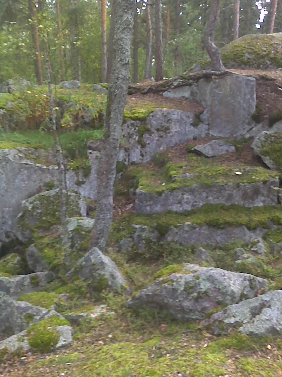Linnavuorilinnan peikkokiviseinämää.