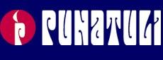 1234435296_punatulen_logo.JPG