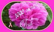 http://mediaserver-2.vuodatus.net/g/8/88262/1246919509_img-d41d8cd98f00b204e9800998ecf8427e.jpg