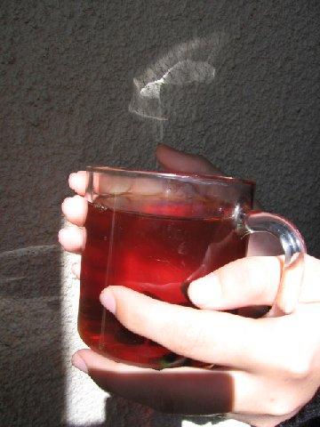 чай от паразитов от малышевой