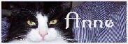 1243870222_img-d41d8cd98f00b204e9800998e