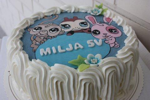 1236500582_helinä ja miljan kakku 046.j