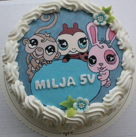 1236500658_helinä ja miljan kakku 056.j